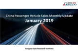 【January, 2019】China Passenger Vehicle Sales Analysis