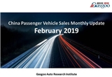 【February, 2019】China Passenger Vehicle Sales Analysis