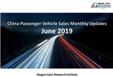【June, 2019】China Passenger Vehicle Sales Analysis